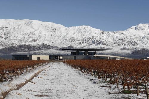 """O. Fournier"" vyninės Valle de Uco rajone bendras vaizdas"